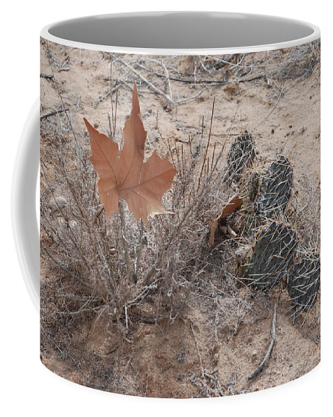 Desert Coffee Mug featuring the photograph East Meets West by Rob Hans