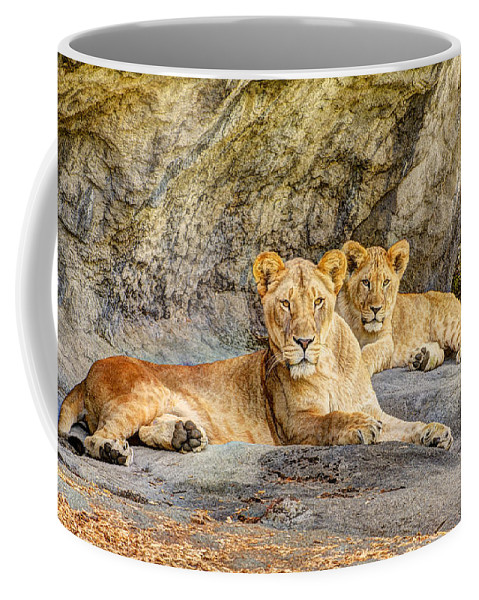Adorable Coffee Mug featuring the photograph Female Lion And Cub Hdr by Marv Vandehey