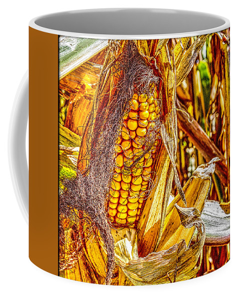 Pictorial Coffee Mug featuring the photograph Field Corn Ready For Harvest by Roger Passman