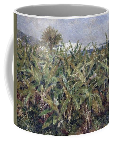 Auguste Renoir Coffee Mug featuring the painting Field Of Banana Trees by Auguste Renoir