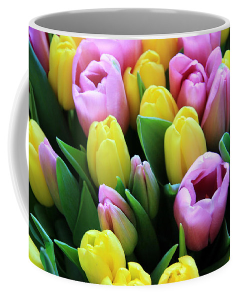 Tulips Coffee Mug featuring the photograph Field Of Tulips by Lali Kacharava