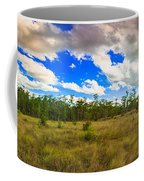 Everglades Coffee Mug featuring the photograph Florida Everglades by Raul Rodriguez