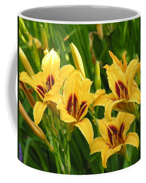 Yello Coffee Mug featuring the photograph Flowers by Diane Greco-Lesser