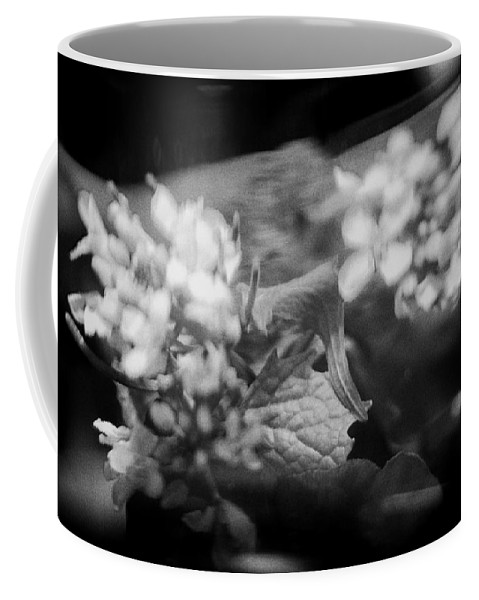 Blacj And White Coffee Mug featuring the photograph flowers in Motion by Scott Wyatt