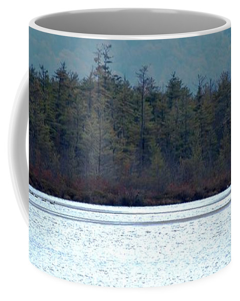 Digital Photograph Coffee Mug featuring the photograph Geese On Labrador Pond by David Lane