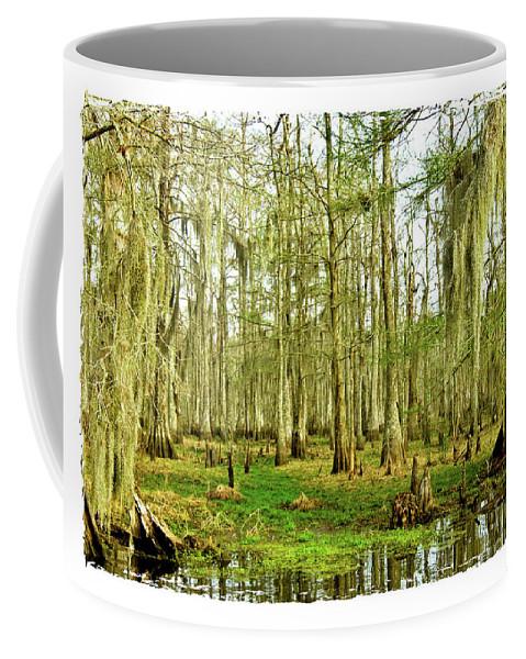 Swamp Coffee Mug featuring the photograph Grand Bayou Swamp by Scott Pellegrin