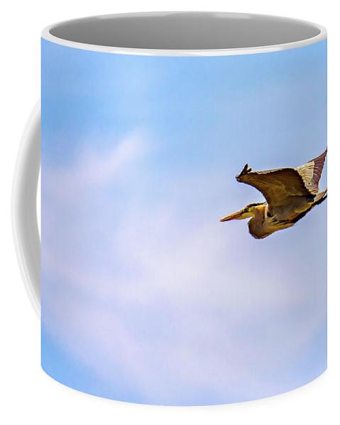 Steve Harrington Coffee Mug featuring the photograph Great Blue Heron by Steve Harrington
