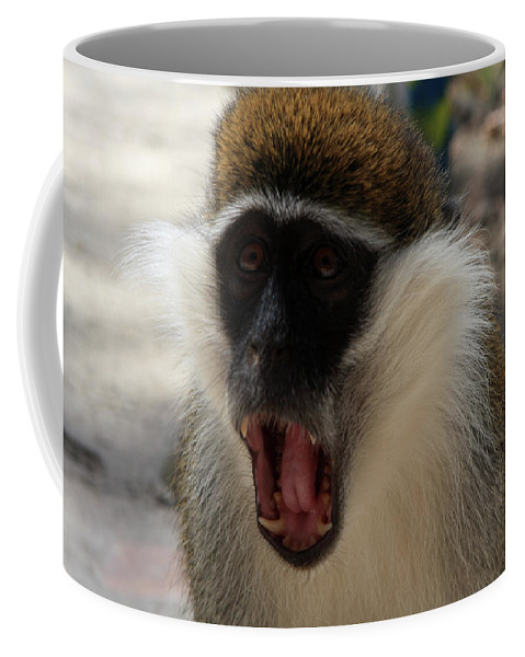 Monkey Coffee Mug featuring the photograph Grivet Monkey Ethiopia by Aidan Moran