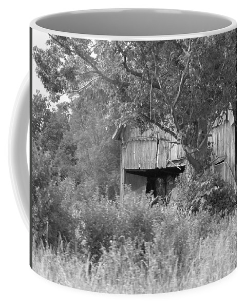 Country Coffee Mug featuring the photograph Hidden by Rhonda Barrett