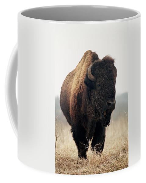 Buffalo Coffee Mug featuring the photograph His Majesty by Rick Rauzi