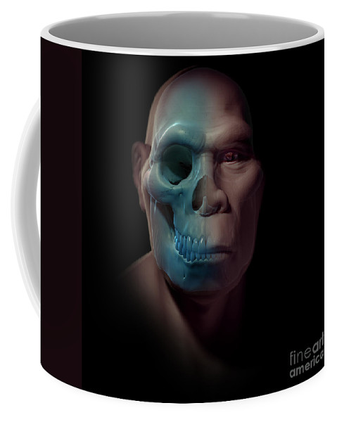Digitally Generated Image Coffee Mug featuring the photograph Homo Erectus With Skull by Science Picture Co