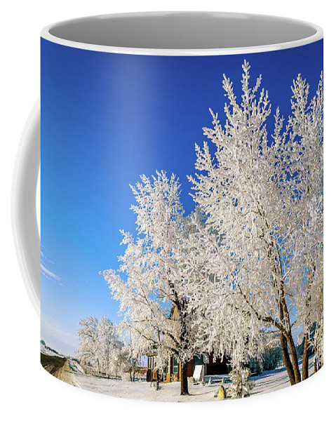 House Coffee Mug featuring the photograph House On The Outskirts 2 by Viktor Birkus