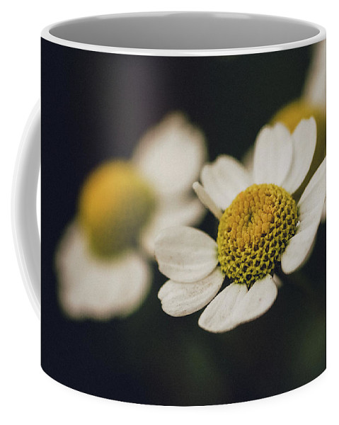 Nature Coffee Mug featuring the photograph In The Garden by Laura Diara