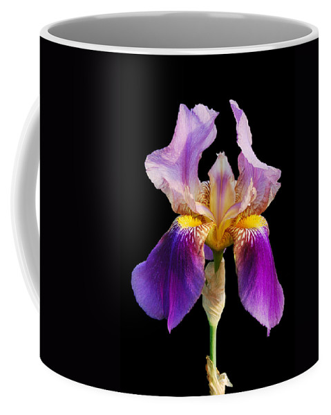 Flower Coffee Mug featuring the photograph Iris 5 by Michael Peychich