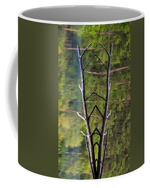 Photography Coffee Mug featuring the photograph Jacob's Ladder by Skip Hunt
