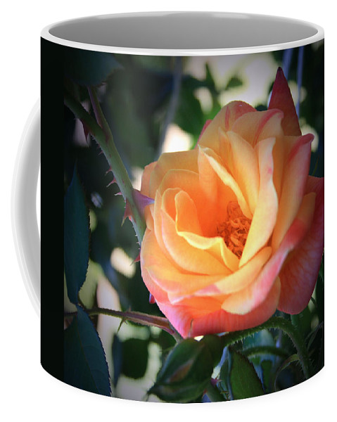 Jacob's Coffee Mug featuring the photograph Jacob's Rose by Marna Edwards Flavell