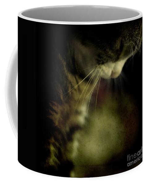 Sleep Coffee Mug featuring the photograph Just Sleep by Angel Ciesniarska