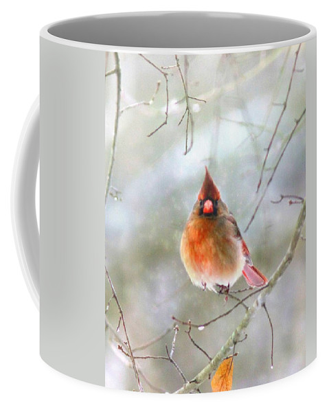 Cardinal Coffee Mug featuring the photograph Lady Alone by Travis Truelove