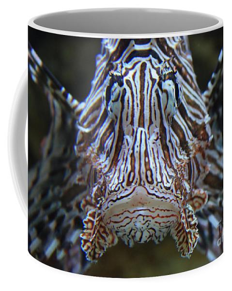 Fish Coffee Mug featuring the photograph Lion Fish by Carol Groenen