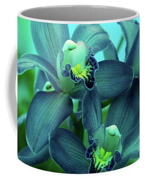 Orchids Coffee Mug featuring the photograph Look At Me by Susanne Van Hulst