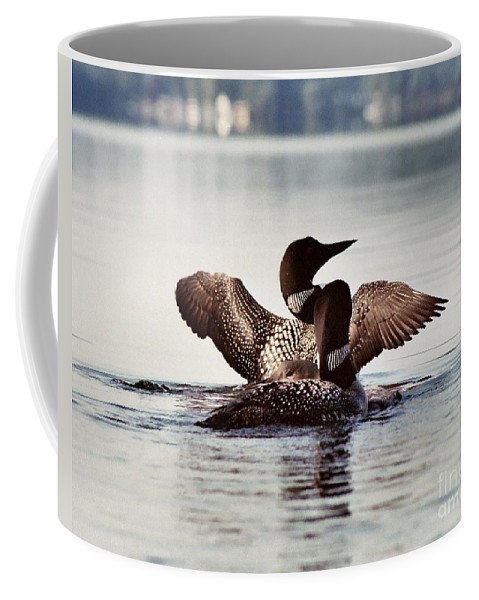 Common Loon Coffee Mug featuring the photograph Loon Family by Sandra Huston