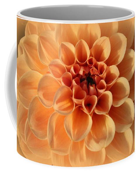Dahlia Coffee Mug featuring the photograph Lovely In Peaches And Cream - Dahlia by Dora Sofia Caputo Photographic Design and Fine Art
