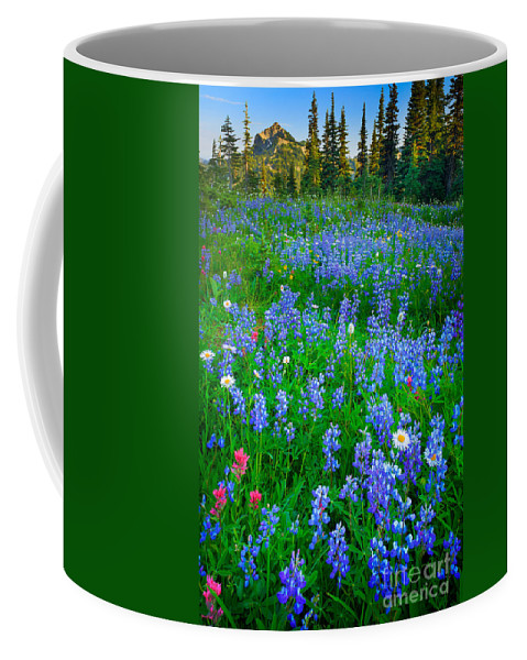 America Coffee Mug featuring the photograph Lupine Cornucopia by Inge Johnsson