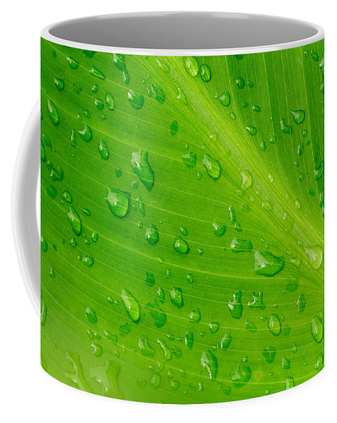 Abstract Coffee Mug featuring the photograph Macro Closeup Of Waterdrops On A Leaf by John Williams