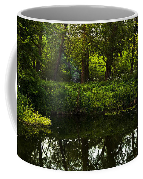 Countryside Coffee Mug featuring the photograph Magic Forest by Svetlana Sewell