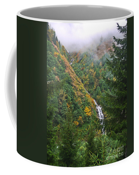 Mist Coffee Mug featuring the photograph Misty Forest Turkey by Moshe Torgovitsky