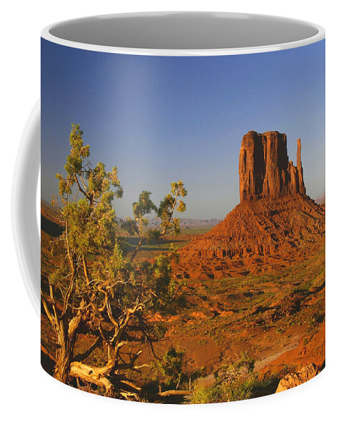 Arizona Coffee Mug featuring the photograph Mitten And Juniper by Winston Rockwell