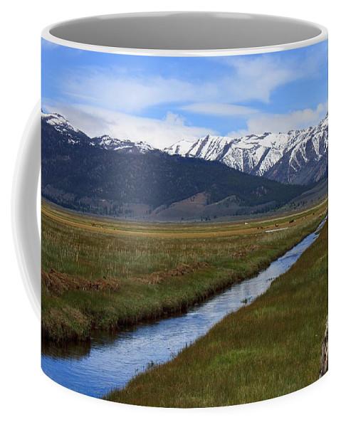 Mono Coffee Mug featuring the photograph Mono County Nevada by Thomas Marchessault
