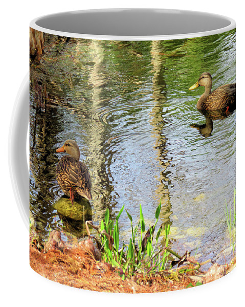 Duck Coffee Mug featuring the photograph Mottled Duck Pair by Rosalie Scanlon