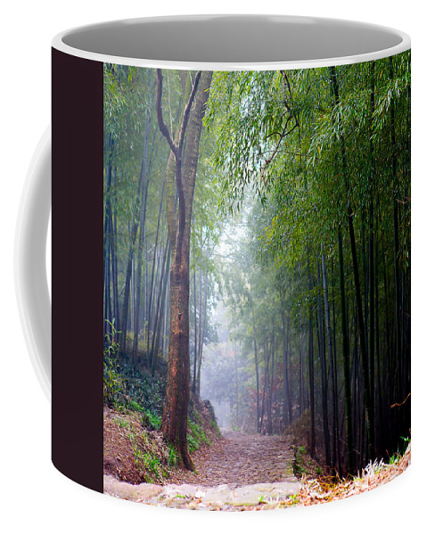 Trees Coffee Mug featuring the photograph Mountain Trail by James O Thompson