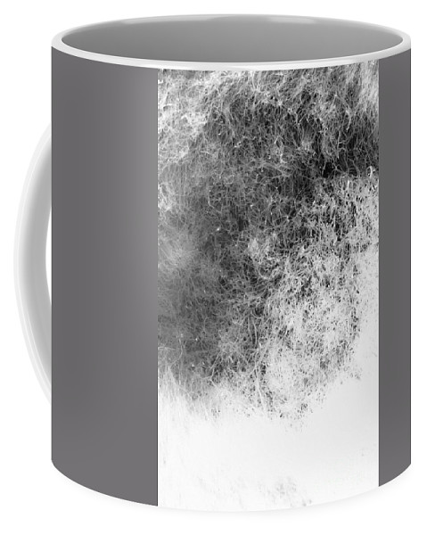 Abstract Coffee Mug featuring the photograph Nature Abstract by Gaspar Avila