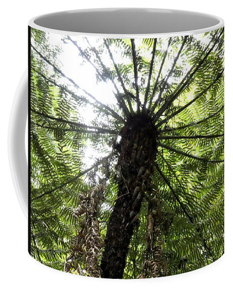 Coffee Mug featuring the photograph Nz Fern by The McFarlane's
