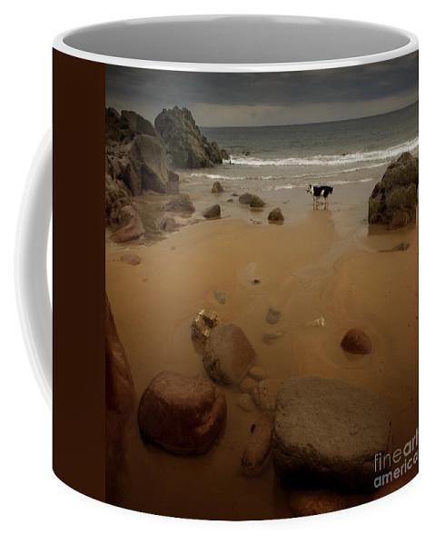 Beach Coffee Mug featuring the photograph On The Beach by Angel Tarantella