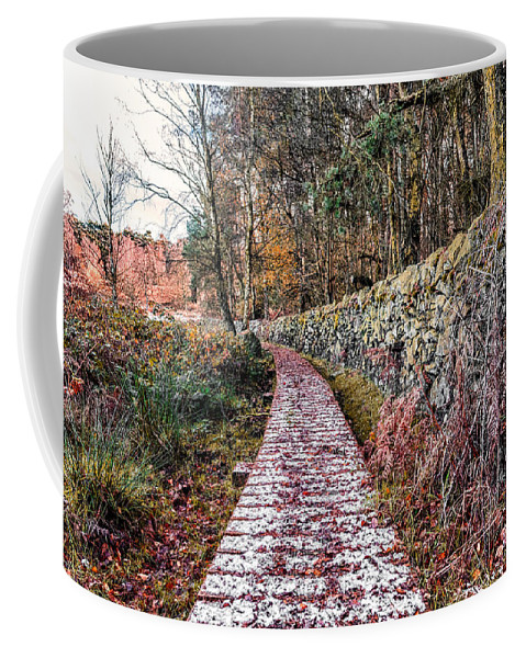 Path Coffee Mug featuring the photograph One To Follow by Nick Bywater