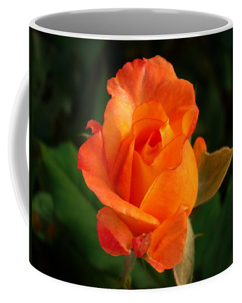 Rose Coffee Mug featuring the photograph Orange Rose by Sandy Keeton