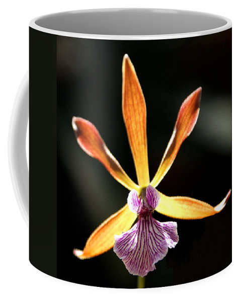 Orchid Coffee Mug featuring the photograph Orchid by Jean Haynes