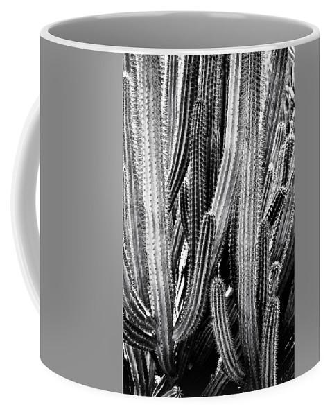 Organ Pipe Coffee Mug featuring the photograph Organ Pipe Cactus by Roger Passman