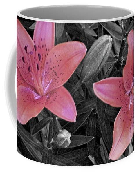 Art; Artist; Asby; Black; Cheetah; Daylily; Desaturated; Design; Designer; Dory; Fine; Flower; Flowers; Garden; Graphic; Jenness; Petals; Photo; Photographer; Pink; Selective Color; Sunny; Sunshine; White Coffee Mug featuring the photograph Pink Daylilies With Partially Desaturated Petals And Black And White Background by Jenness Asby