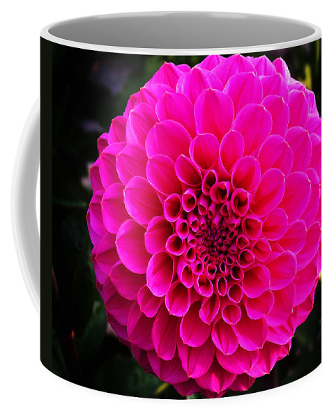 Flower Coffee Mug featuring the photograph Pink Flower by Anthony Jones