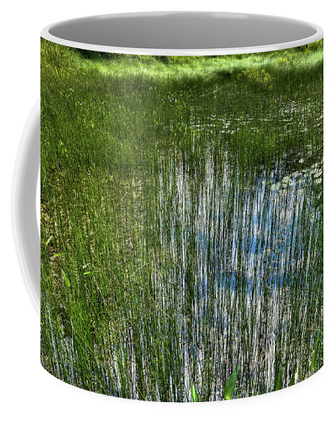 Pond Grasses Coffee Mug featuring the photograph Pond Grasses by David Patterson