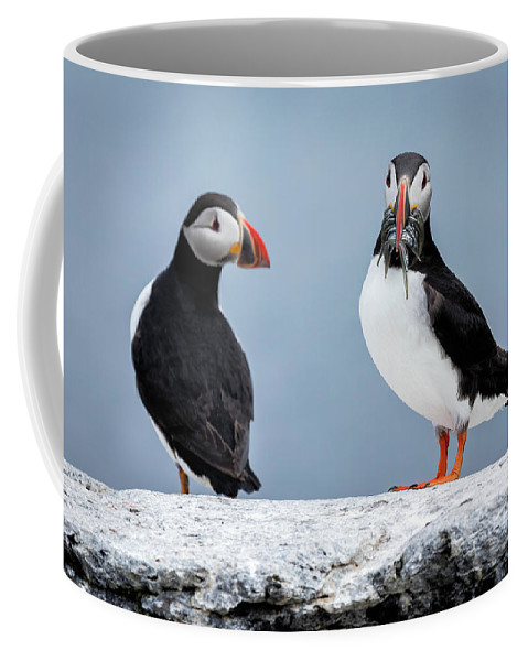Valeriy Shvetsov Coffee Mug featuring the photograph Puffins by Valeriy Shvetsov