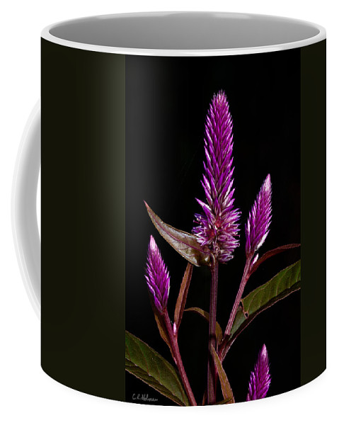 Flower Coffee Mug featuring the photograph Purple by Christopher Holmes