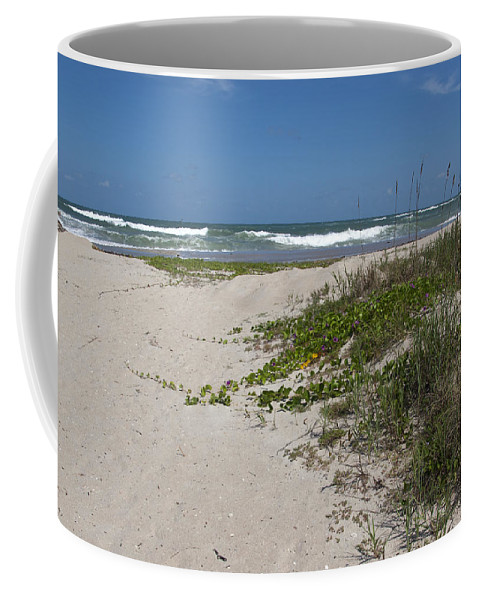 Railroad Coffee Mug featuring the photograph Railroad Vine And Sea Oats On The Atlantic In Florida by Allan Hughes