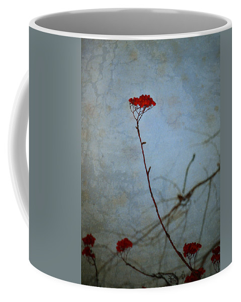 Blue Coffee Mug featuring the photograph Red Berries Blue Sky by Tara Turner