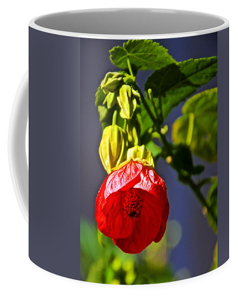 Scarlet Mallow At Pilgrim Place In Claremont Coffee Mug featuring the photograph Scarlet Mallow At Pilgrim Place In Claremont-california- by Ruth Hager