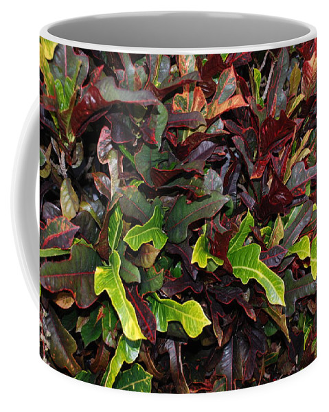 Macro Coffee Mug featuring the photograph Red Green Leaves by Rob Hans